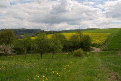 Frühling im Haunetal