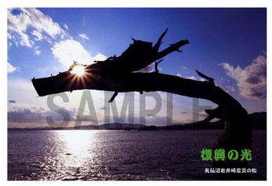 復興の光 岩井崎  龍の松