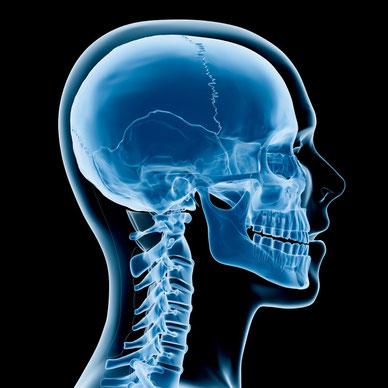http://www.physio-vita.info/krankheiten/cranio-mandibulaere-dysfunktion/