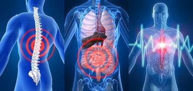 Die Energielage des Patienten wird in einer 8-minütigen Messung erfasst