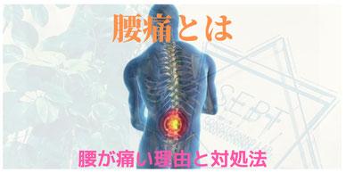 腰痛 腰 痛み 治療