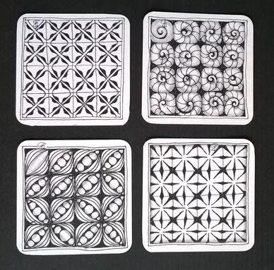 fragments V5, X7, V7 and Q1