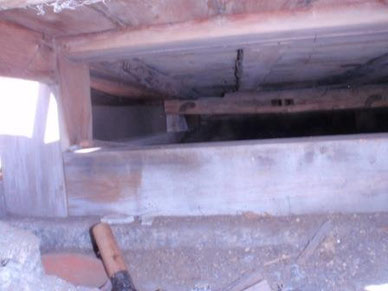 新館1階の南庭に面した床下(ケダモノの侵入口)