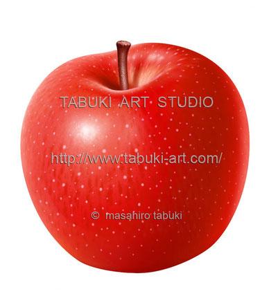リンゴ丸 RD10632