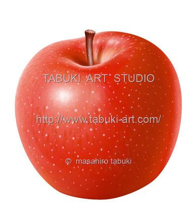 リンゴ丸 RD10627