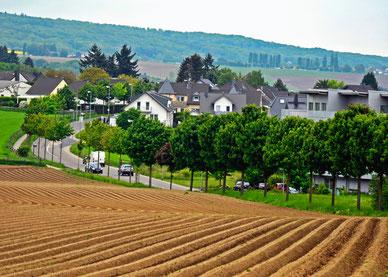 Landwirtschaft Andernach