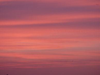 これは数日前の夕焼け~ 茜色が空一杯に広がっていました。