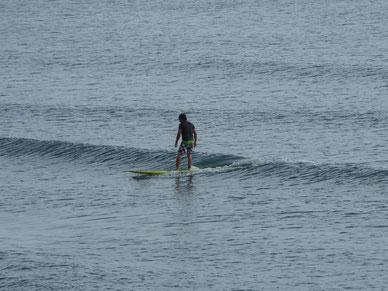 私も入水していたので今日一のセットに乗ったHMちゃんの写真はありません・・