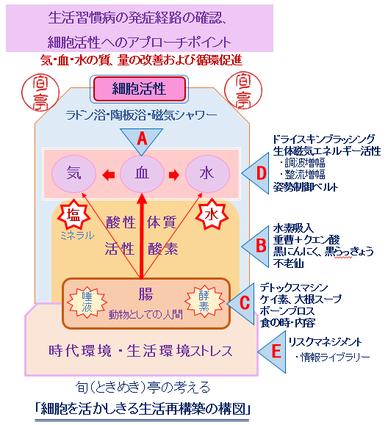 細胞を活かしきるキーコンセプト No.2 Cafe すてきに活ききる 旬(ときめき)亭       http://sutekini-ikiru-cafe.jimdo.com/