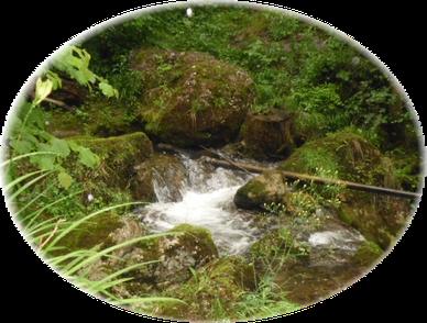 Bild: innere Quelle Energetik