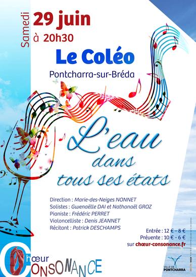 Consonance en concert au Coléo de Pontcharra - samedi 29 juin 2019