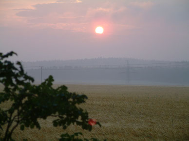 Sonnenaufgang in Krickelhof bei der Fußwallfahrt 2009