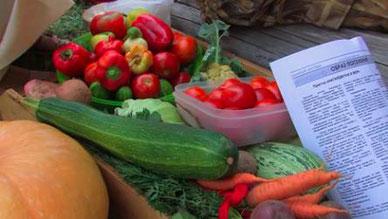 自己生產的蔬果,右側可見居民自己發行的報紙。