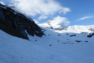 Gross Schärhorn, Skitour, Klausenpass, Chammlialp, Griessgletscher, Chammlilücke, Nordflanke, Abfahrt