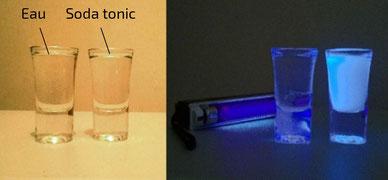 Schwepps lumière jour et UV : fluorescence