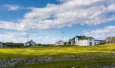 ©Foto: Fredrik Fløgstad / Statens vegvesen