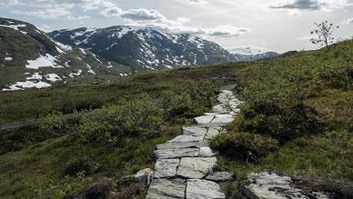 ©Foto: Therese Ruud / Statens vegvesen