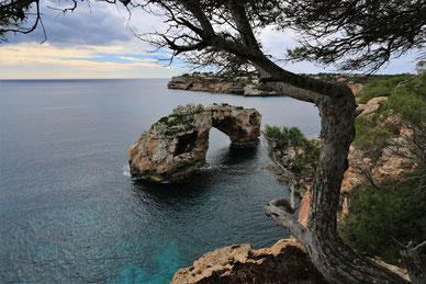Es Pontas, Mallorca, Santanayi