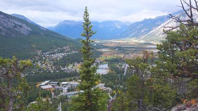 Blick vom Tunnel Mountain auf Banff