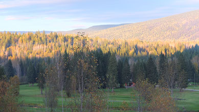 unser Campground im Wells Gray Provincial Park