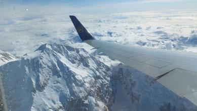 Blick auf den Denali (Mount McKinley)