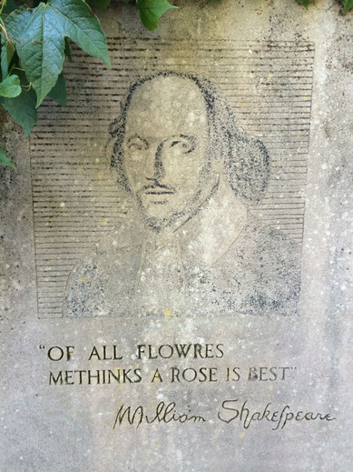 Of all flowres metinks a rose is best.  William Shakespeare