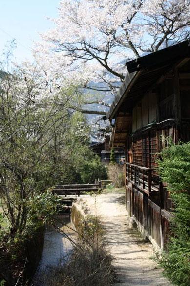ruelles et canaux de Tsumago