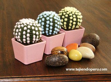 Amigurumi Cactus Tejiendo Peru : Cactus fantas?a tejido a crochet (amigurumi)