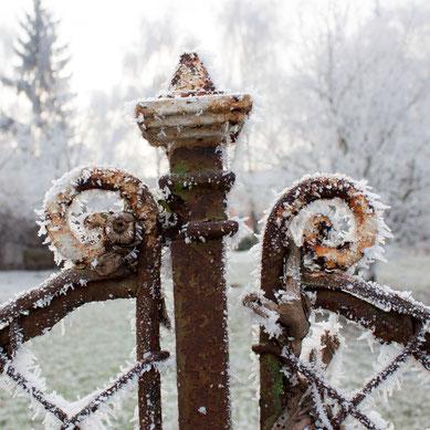 alter Gartenzaun im Winter - RAUREIF
