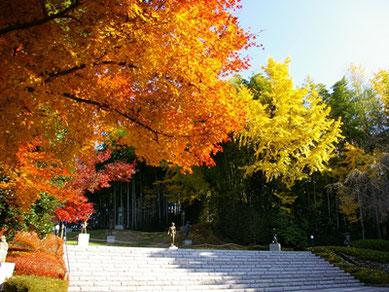 敷地内の野外彫刻庭園では、紅葉と彫刻の美の競演をご覧いただけます