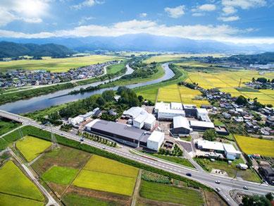 のどかな田園風景の中、越後平野を流れる加治川に寄り添うように建つ『菊水酒造』。