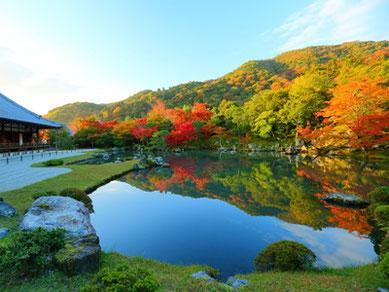 京都五山に数えられる『天龍寺』。紅く染まった山肌を借景に、曹源池の水面に赤と黄と緑が映える景色は圧巻のひと言。