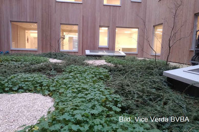 Dachsubstrat Intensiv Substrat Pflanzen