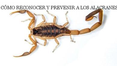 Video informativo para la prevención y el cuidado de la salud