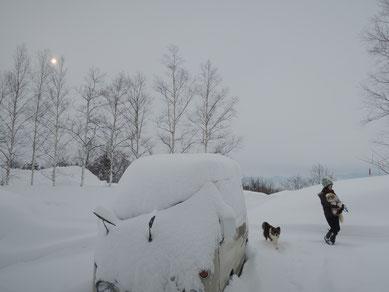 3/12撮影。また車が雪で隠れました・・