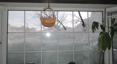 3/17撮影。はしごをかけて雪山の上から雪かきした結果、久々に空が見えました(嬉泣)