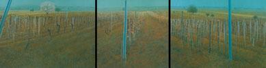 Weingärten, (Vineyard) Triptychon, 70x100,70x70,70x100cm