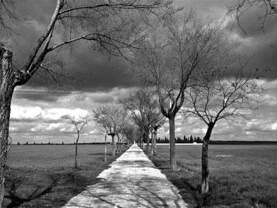 Manzanares, camnio al cementerio