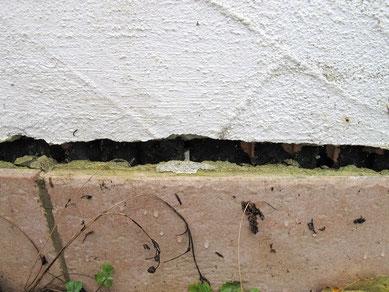 Am Anschluss der Sockelfliesen zum Außenputz kann Wasser in das Mauerwerk eindringen.