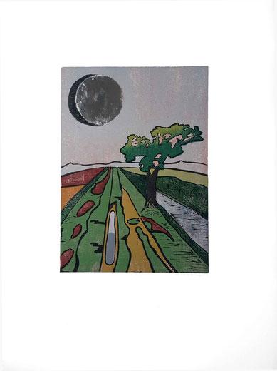 Holzschnitt, Farbholzschnitt, Druckgrafik, Originalgrafik, Worpswede, Abstrakt, Teufelsmoor, Künstlerkolonie, Landschaft, Mond, Silbermond, Echtsilber