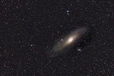 M31 - Andromedagalaxie am 12.02.2009, Canon EOS 450D auf Celestron CG-5GT, 250 mm, f/5.6, 10x180sec, ISO 1600, Autoguiding mit ALCCD5 an Meade ETX90-OTA