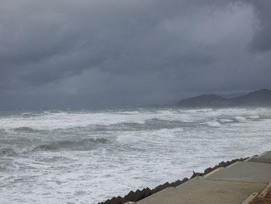 立ってるのも吹き飛ばされるぐらいの強い風!