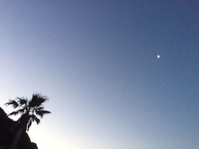 まだお月さま出てた。