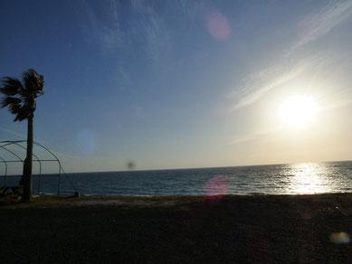 日中風吹きましたが、波は無し(T_T)
