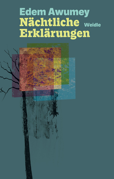 Das Bild zeigt das Cover von Nächtliche Erklärungen von Edem Awumey.
