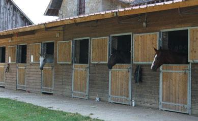 Boxes pour les chevaux
