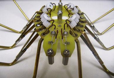 Halb aufgebaute mechanische Spinne