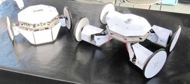 ZURI Roboter auf Rädern