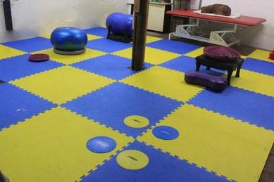 Hundetrainingsraum Wahrenholz für Fitness und Alltagstraining