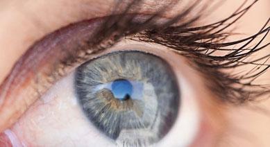 les oligo-éléments et la vision - article association l'Art de Voir